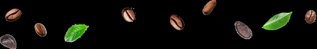 Φύλλα τσάι, Καρπός Κακάο, Φασόλι εσπρέσο